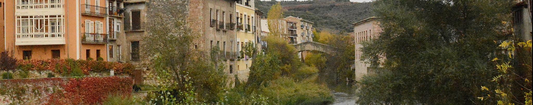 Río Ega a su paso por Estella